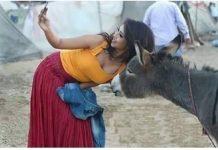funny viral photos