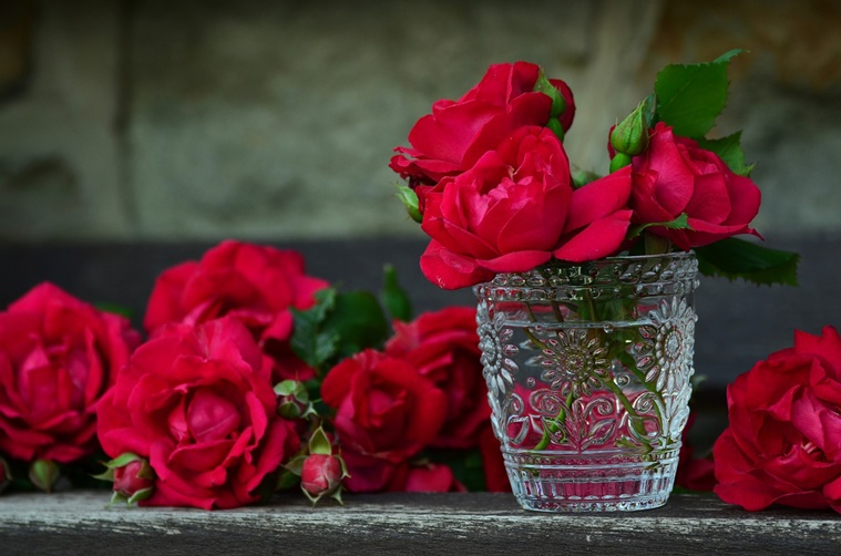 types of rose, rose pic, love rose pic