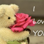 teddy day love images